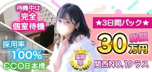 スピードエコ 日本橋店