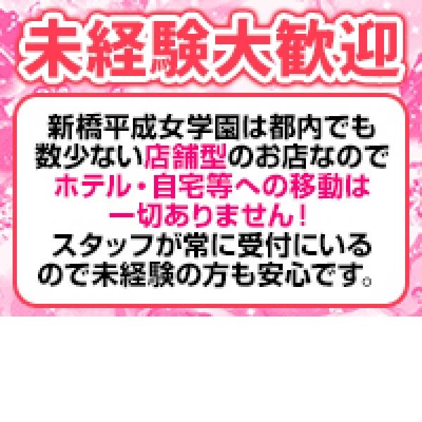 新橋平成女学園_店舗イメージ写真1