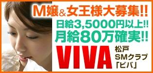 松戸VIVA