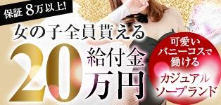 バニーコレクション徳島店