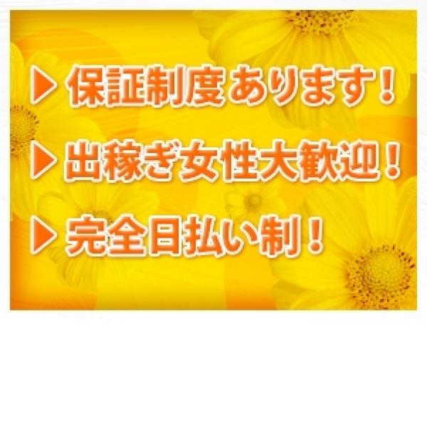 SUGAO_店舗イメージ写真1