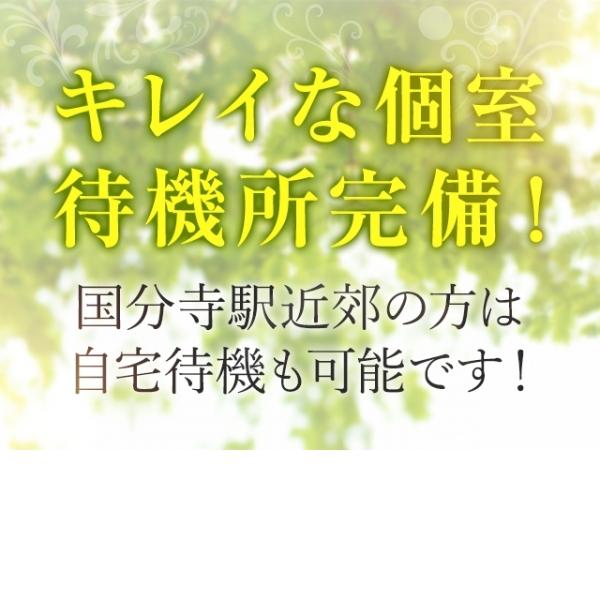 国分寺人妻研究会_店舗イメージ写真3