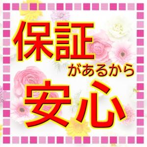 出稼ぎ特集_ポイント1_7244