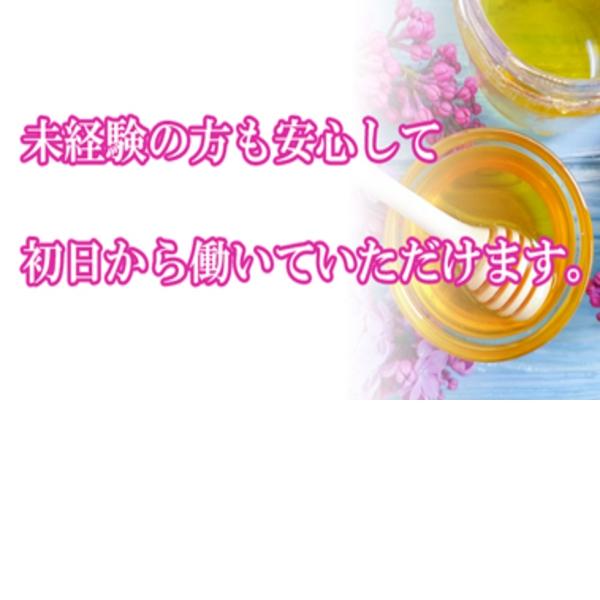 熟年カップル難波・日本橋~生電話からの営み~_店舗イメージ写真2