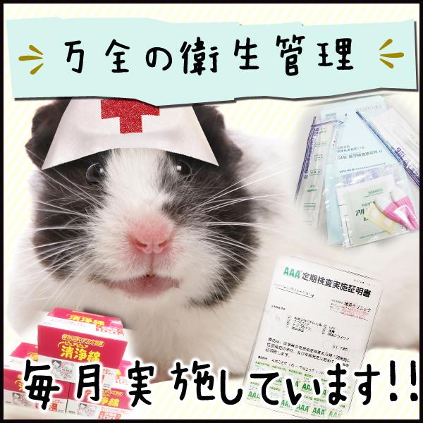 GHR_店舗イメージ写真3