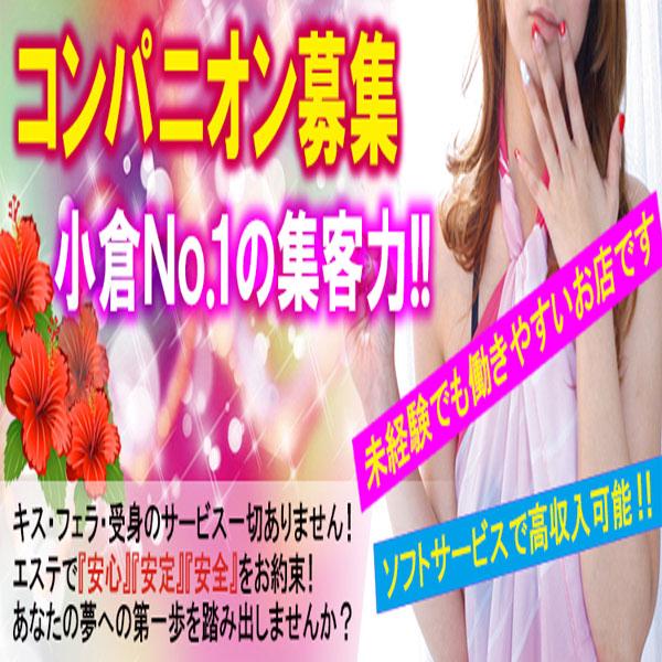 癒しのマカロン_店舗イメージ写真1