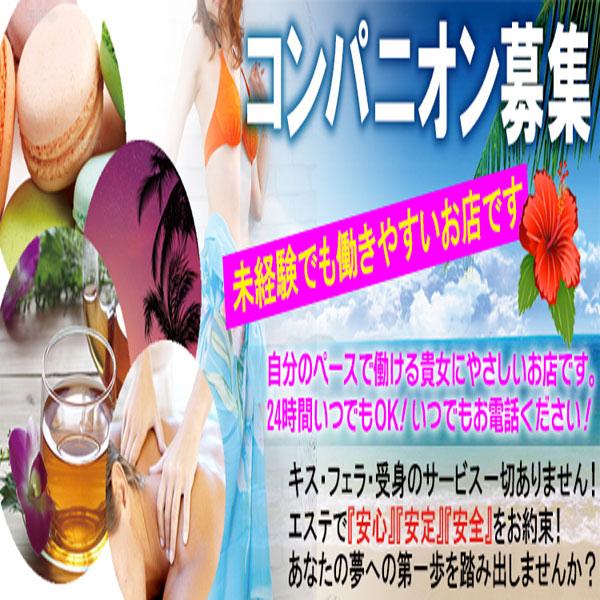 癒しのマカロン_店舗イメージ写真2