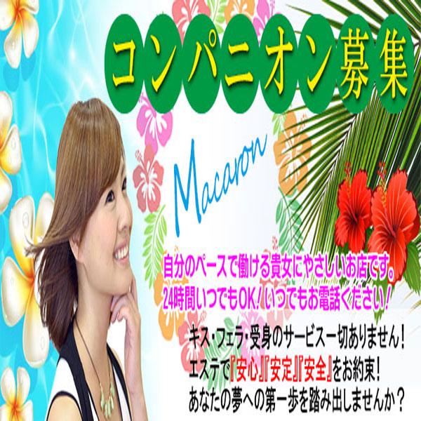 癒しのマカロン_店舗イメージ写真3