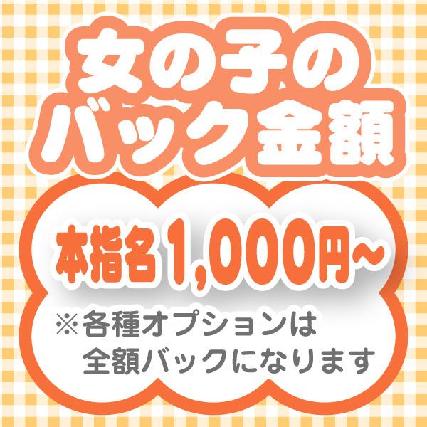 ぽちゃメイド _店舗イメージ写真3