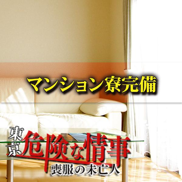 東京危険な情事〜喪服の未亡人〜_店舗イメージ写真2