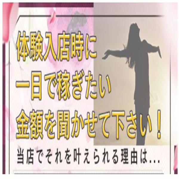 ドМな奥様すすきの_店舗イメージ写真3
