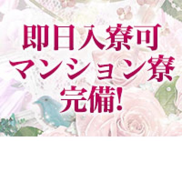 艶ドレス_店舗イメージ写真2