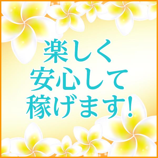 きれい向上委員会 葛西店_店舗イメージ写真2