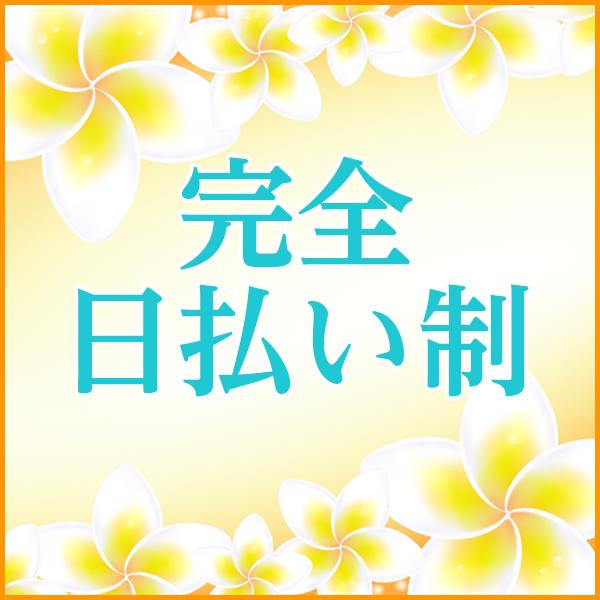 きれい向上委員会 葛西店_店舗イメージ写真3