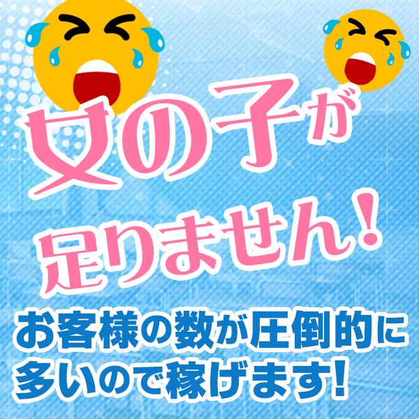 全力!!乙女坂46_店舗イメージ写真2
