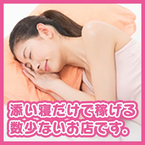 プッチ_店舗イメージ写真3