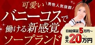 ドMなバニーちゃん大宮店