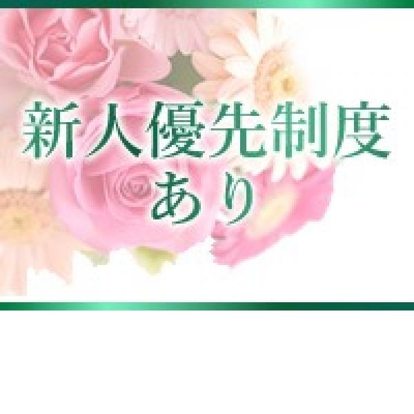 美人屋_店舗イメージ写真1