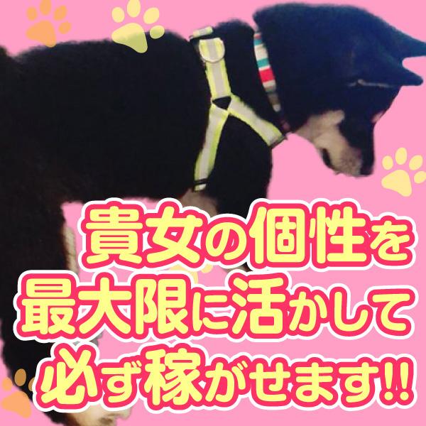 大塚デリヘル倶楽部_店舗イメージ写真1