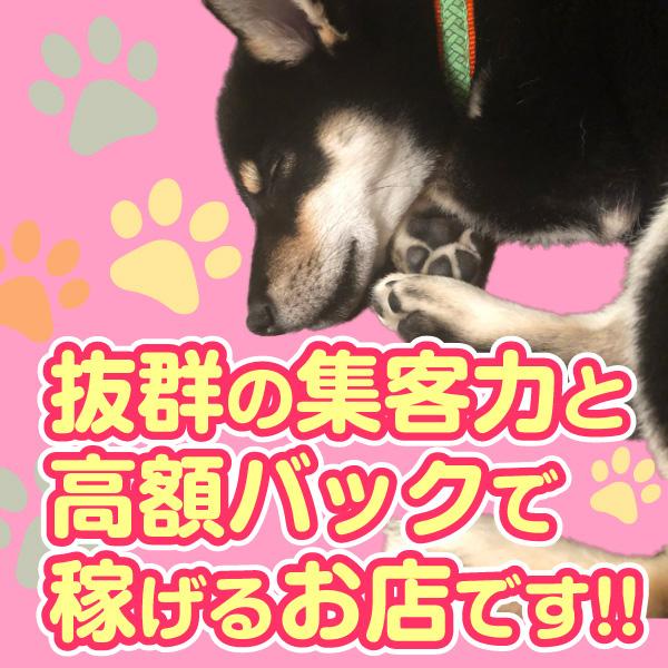 大塚デリヘル倶楽部_店舗イメージ写真3
