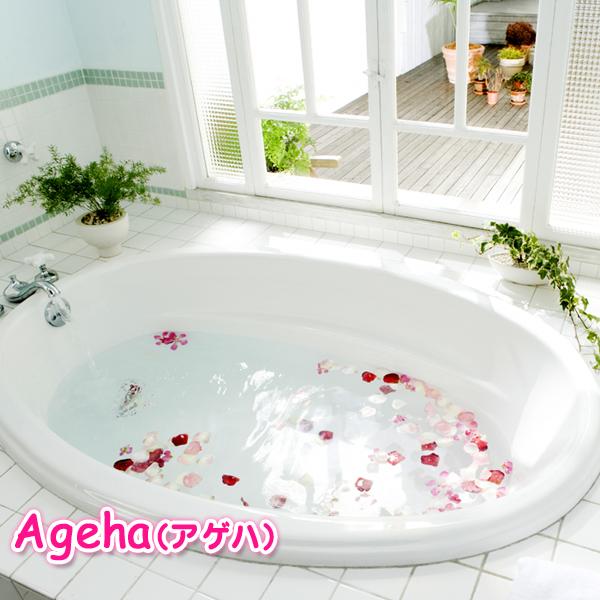 Ageha(アゲハ)_店舗イメージ写真3