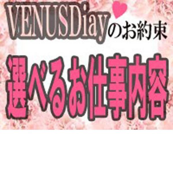 VENUS Diary_店舗イメージ写真1