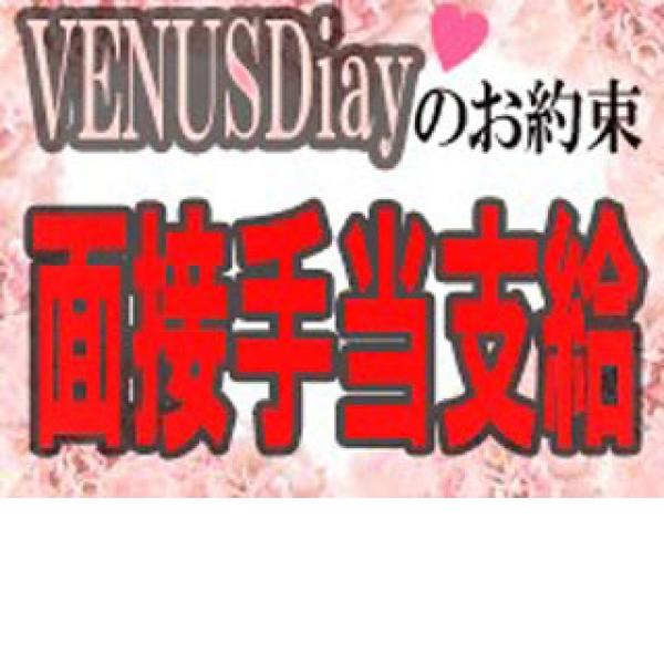 VENUS Diary_店舗イメージ写真2