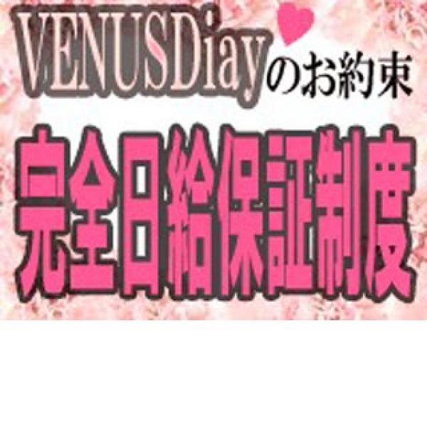 VENUS Diary_店舗イメージ写真3