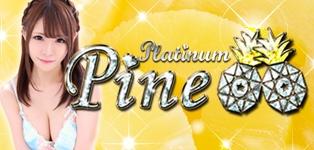 Platinum Pine