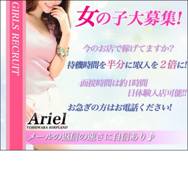 Ariel_店舗イメージ写真1