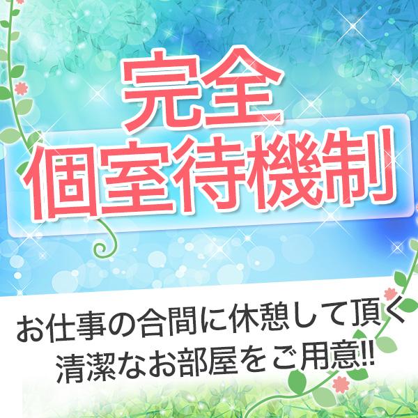 シェイム_店舗イメージ写真2