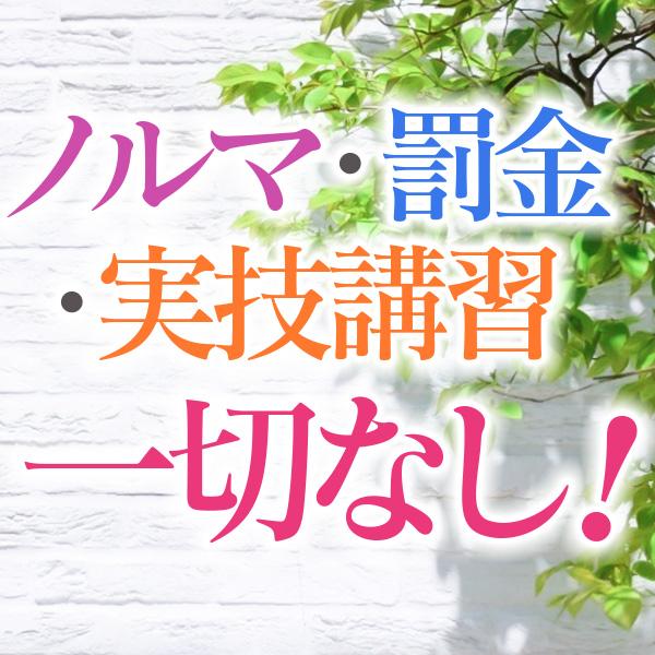 横浜熟女MAX_店舗イメージ写真1