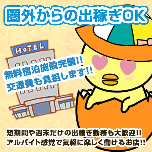 渋谷ハグ専門店 ひよこcafe_店舗イメージ写真3