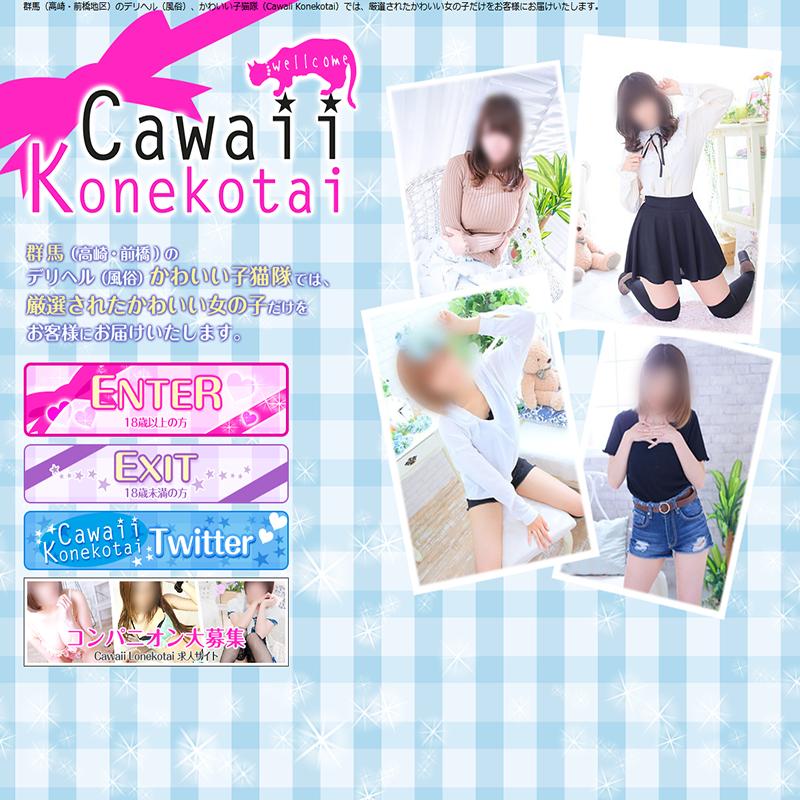 Cawaii Konekotai~かわいい子猫隊~_オフィシャルサイト