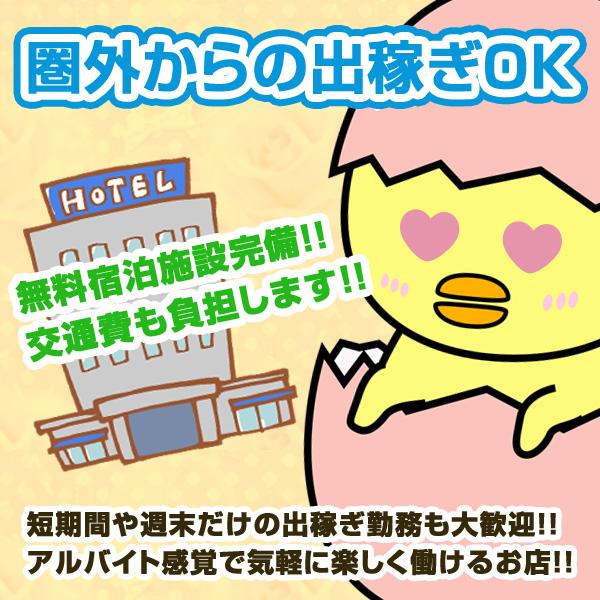 新感覚ハグ専門店 たまご以上ひよこ未満_店舗イメージ写真3