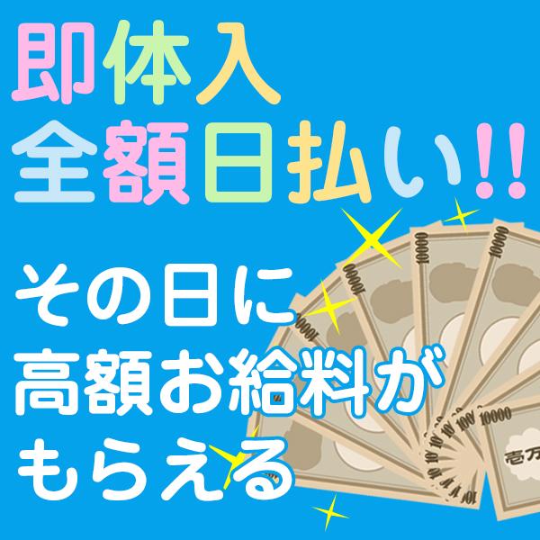 清楚~Seiso~_店舗イメージ写真2