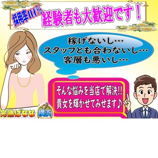 完熟ばなな 横浜店_店舗イメージ写真3
