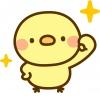 ひよこ_写真