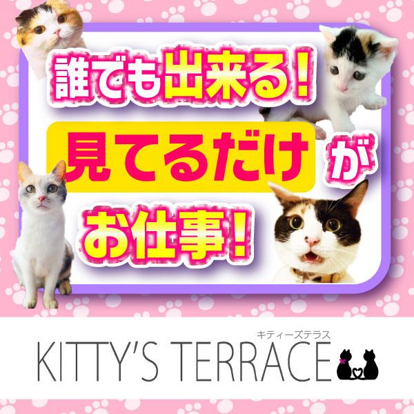キティーズテラス渋谷店_店舗イメージ写真3
