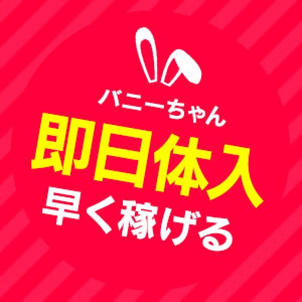 ドМなバニーちゃん名古屋・池下_店舗イメージ写真2