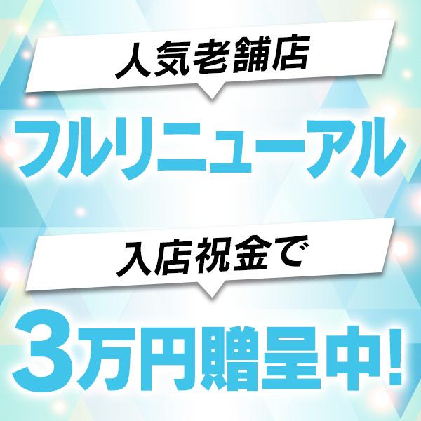 セクシーキャット神田店_店舗イメージ写真3
