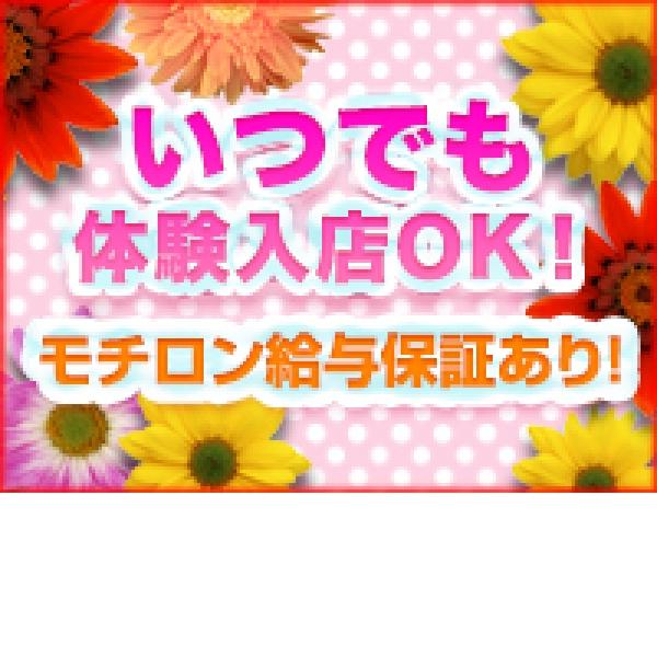 錦糸町ガマン汁天国 手コキ百華店_店舗イメージ写真1