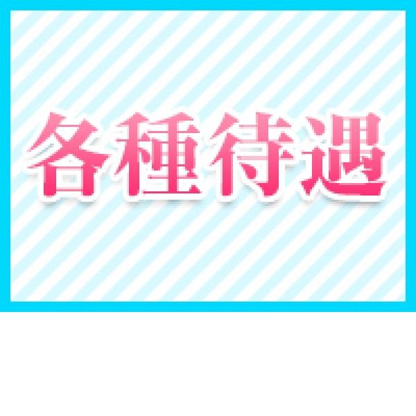 ビッグバード_店舗イメージ写真3