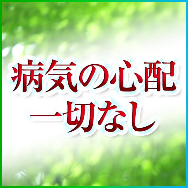 MAMALAND(ままランド)_店舗イメージ写真3