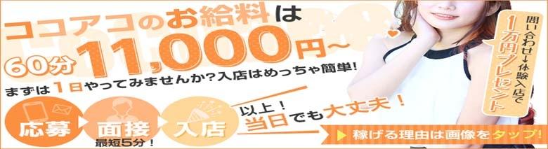CoCoaco(ココアコ)大阪本店