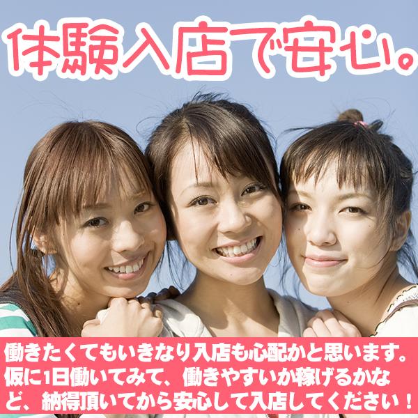 タオパイパイ 新橋店_店舗イメージ写真1