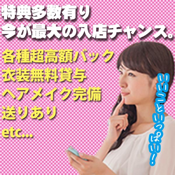 タオパイパイ 新橋店_店舗イメージ写真3