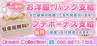 Dream Collection (ドリームコレクション)