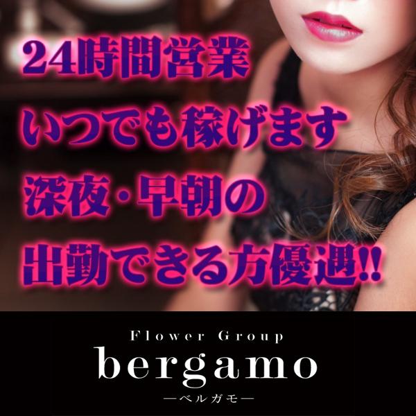 【bergamo(ベルガモ)】宮崎店_店舗イメージ写真2