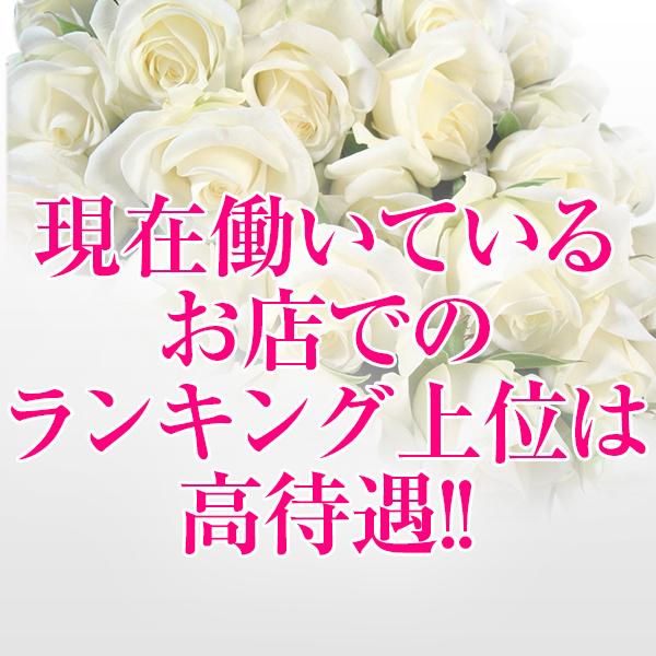 【bergamo(ベルガモ)】宮崎店_店舗イメージ写真3